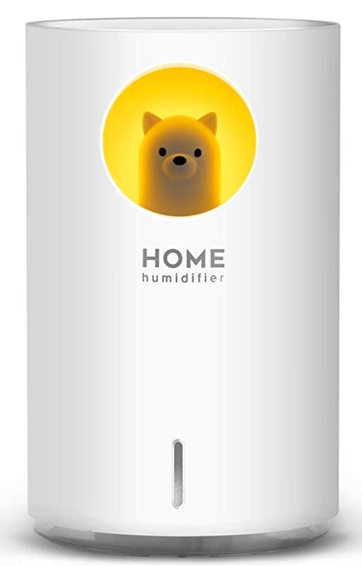 home humidifier
