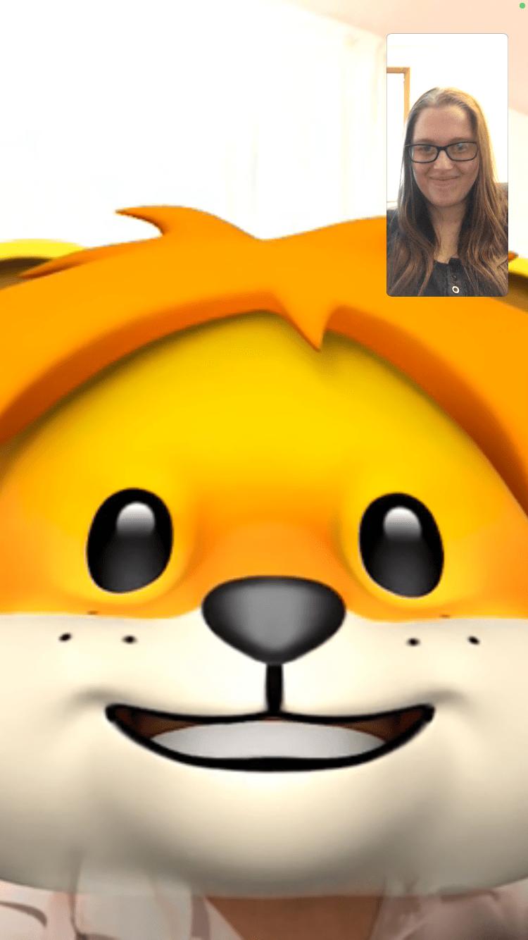 screenshot of a FaceTime call using screen effects